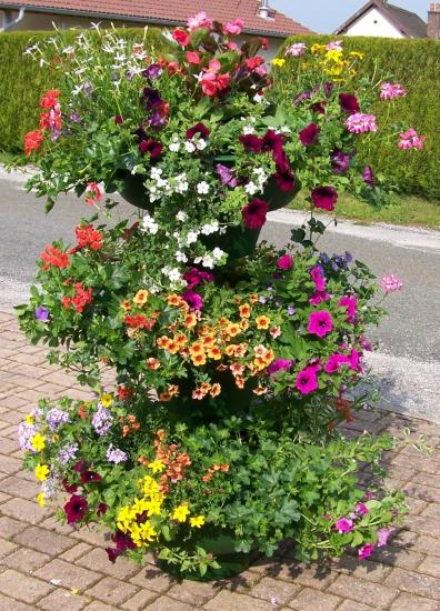 Vasques fleuries